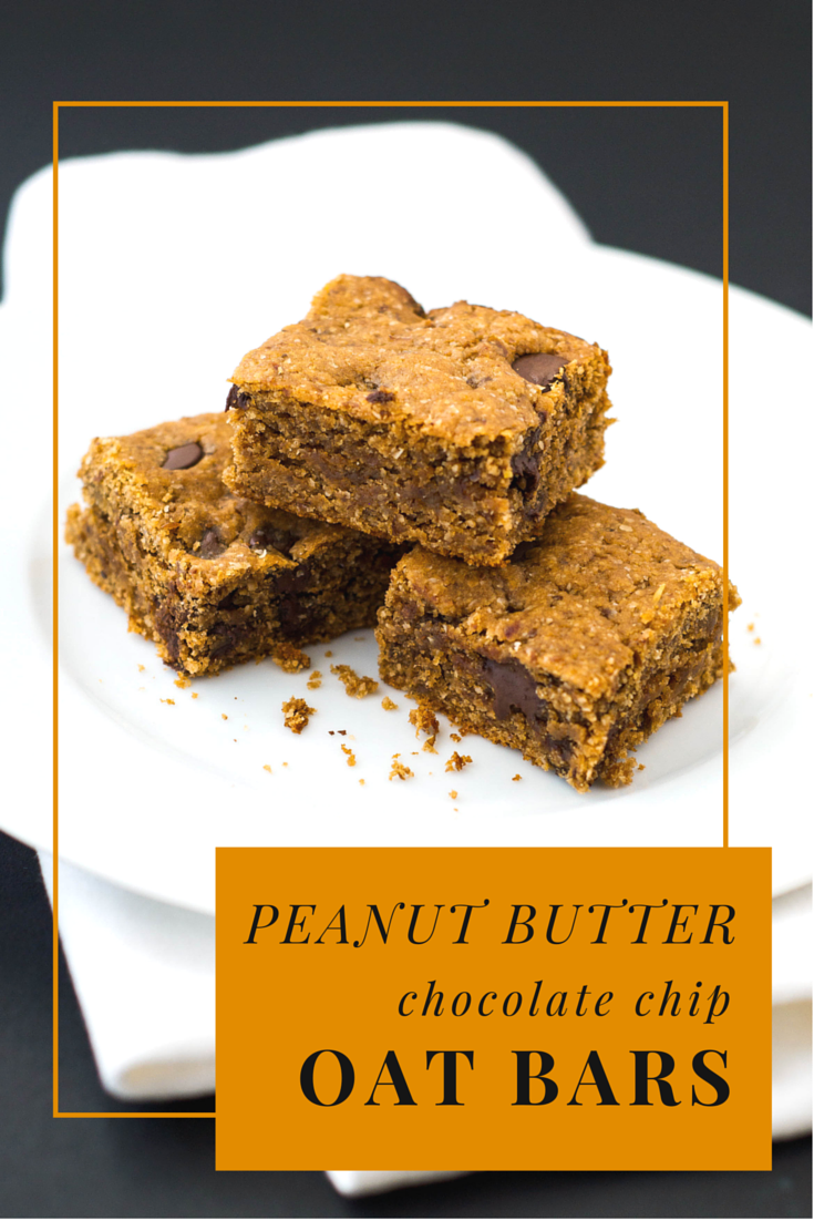 Peanut Butter Chocolate Chip Oat Bars {Gluten Free} | Family Food ...